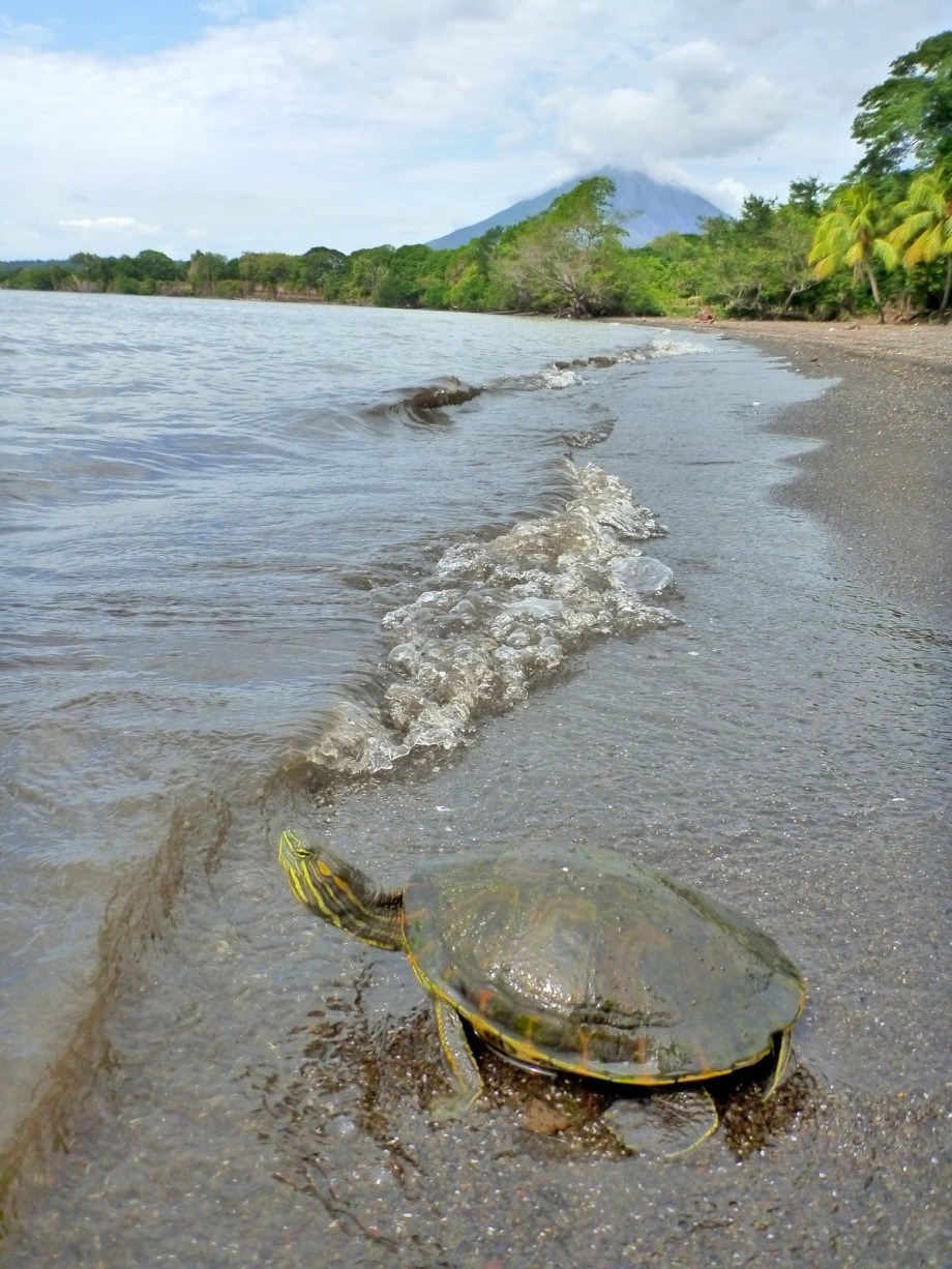 Photo of Isla de Ometepe, Nicaragua