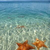 Playa Boca del Drago in Bocas del Toro, Panama