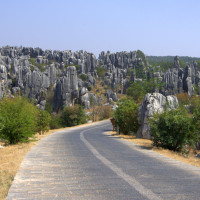 Photo of Stone Forest in Shilin, China