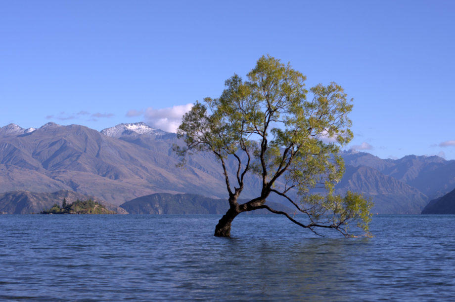 Photo of Wanaka, New Zealand